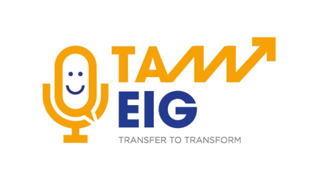 tam-eig.com